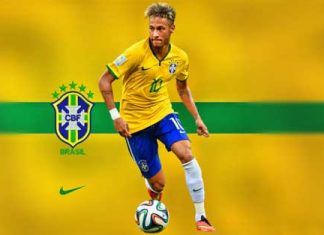 DLS Brazil Team