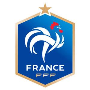DLS France Team