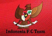 DLS Indonesia Team