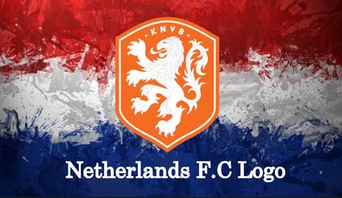 DLS Netherlands Team