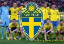 DLS Sweden Team