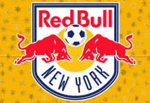 DLS New York Red Bulls Team