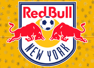DLS New York Red Bulls Team