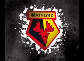 DLS Watford FC Team