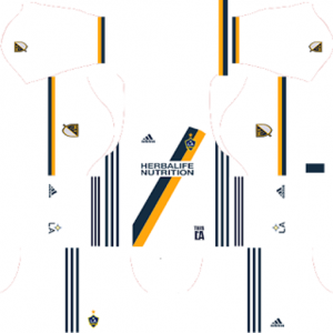 LA Galaxy Home Kit