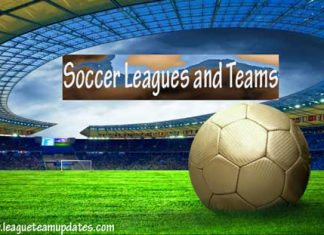 Soccer Leagues and Teams