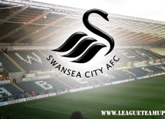 Swansea City Team