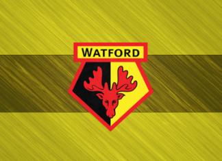 Watford Team
