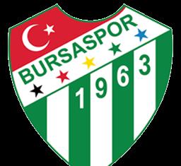 Bursaspor LogoPNG 256x256 Size